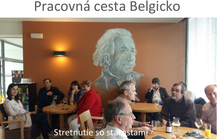 oik-pracovna-cesta-belgicko-2016-2